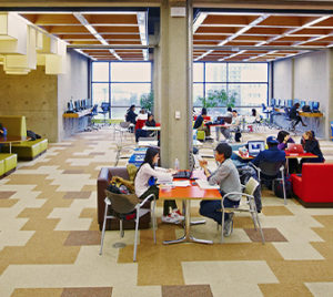 Students studying in the Scott Library Common.